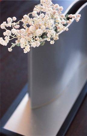 Modern Silver Flower Vase Stock Photo - Premium Royalty-Free, Code: 622-06009705