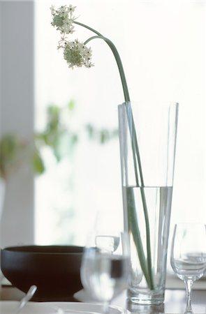 White Flower In Glass Vase Stock Photo - Premium Royalty-Free, Code: 622-06009771