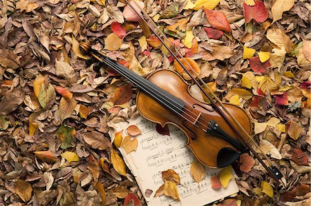 sheet music background - Violin And Music Sheet In Fallen Leaves Stock Photo - Premium Royalty-Free, Code: 622-06191068