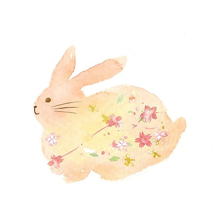 Rabbit illustration Stock Photo - Premium Royalty-Free, Code: 622-06487862