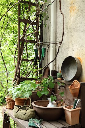 Plants and gardening tools Stock Photo - Premium Royalty-Free, Code: 622-06548683