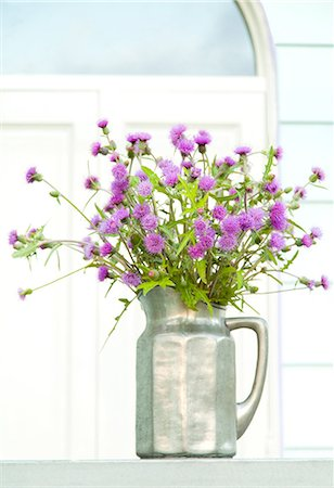 Thistle flowers in a vase Stock Photo - Premium Royalty-Free, Code: 622-06549000