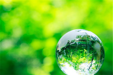 sprout - Glass globe Stock Photo - Premium Royalty-Free, Code: 622-06549308
