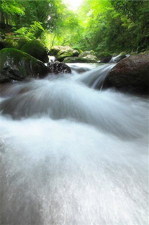 streams scenic nobody - Water stream Stock Photo - Premium Royalty-Free, Code: 622-06549347