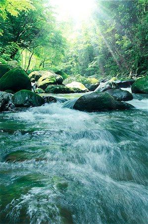 shower - Water stream Stock Photo - Premium Royalty-Free, Code: 622-06549340