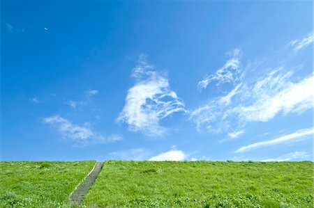 Grassland and blue sky with clouds Stock Photo - Premium Royalty-Free, Code: 622-06549416