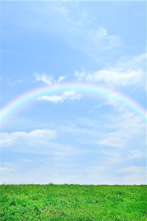 Grassland and sky with rainbow Stock Photo - Premium Royalty-Free, Code: 622-06842535