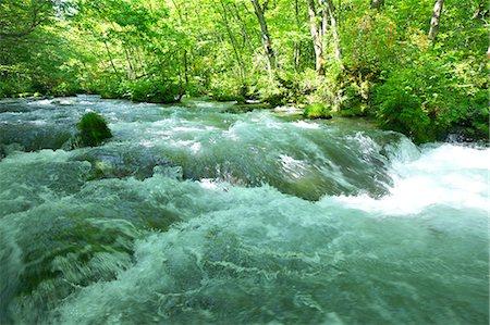 Oirase mountain stream, Aomori Prefecture Stock Photo - Premium Royalty-Free, Code: 622-06900231