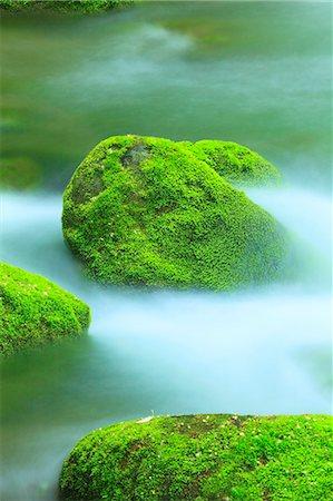 Moss and water stream Stock Photo - Premium Royalty-Free, Code: 622-06900595