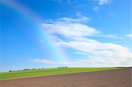 season - Hokkaido, Japan Stock Photo - Premium Royalty-Free, Code: 622-07841196