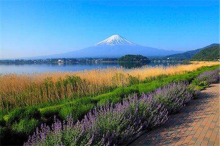 fantastically - Yamanashi Prefecture, Japan Stock Photo - Premium Royalty-Free, Code: 622-08065465