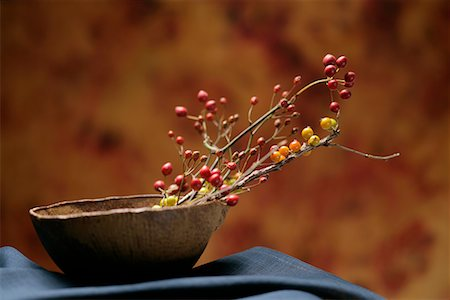 Japanese Twigs in Bowl Stock Photo - Premium Royalty-Free, Code: 622-02355119