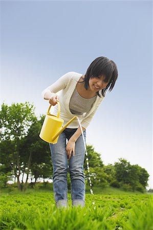 Woman watering plants in garden Stock Photo - Premium Royalty-Free, Code: 622-02395552