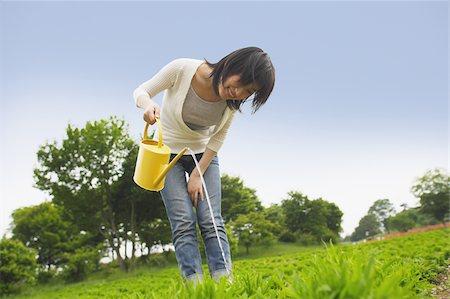 Woman watering plants in garden Stock Photo - Premium Royalty-Free, Code: 622-02395553
