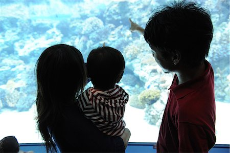 exhibition - Couple with his child watching aquarium Stock Photo - Premium Royalty-Free, Code: 622-02758515