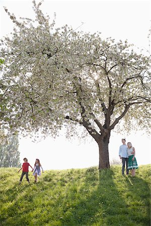 Family playing under tree in park Stock Photo - Premium Royalty-Free, Code: 635-05550206