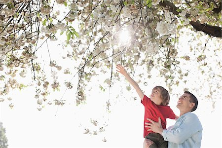 reaching - Father and son playing under tree outdoors Stock Photo - Premium Royalty-Free, Code: 635-05550209