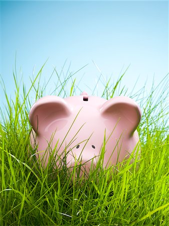 savings - Piggy bank in grass Stock Photo - Premium Royalty-Free, Code: 635-05550300