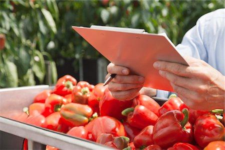 Technician with clipboard examining produce Stock Photo - Premium Royalty-Free, Code: 635-05550711