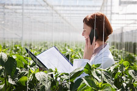 farm phone - Scientist talking on cell phone in greenhouse Stock Photo - Premium Royalty-Free, Code: 635-05550732