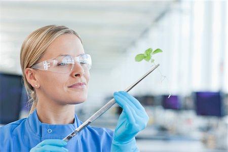 Scientist examining plant in lab Stock Photo - Premium Royalty-Free, Code: 635-05550784