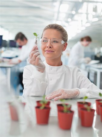Scientist examining plants in lab Stock Photo - Premium Royalty-Free, Code: 635-05550794