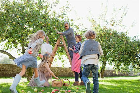 Multi-generation family harvesting apples in orchard Stock Photo - Premium Royalty-Free, Code: 635-05656407