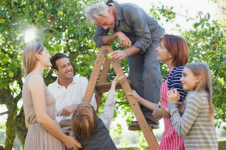 Multi-generation family harvesting apples in orchard Stock Photo - Premium Royalty-Free, Code: 635-05656425