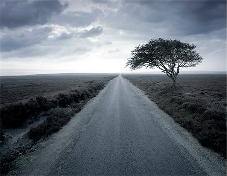 forever - Dirt road stretching through rural landscape Stock Photo - Premium Royalty-Free, Code: 635-05972217