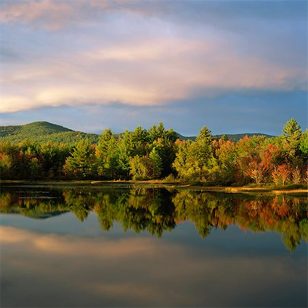 fall trees lake - Trees and sky reflected in still lake Stock Photo - Premium Royalty-Free, Code: 635-05972742