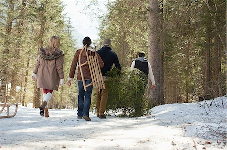 snow christmas tree white - Friends carrying fresh cut Christmas tree in woods Stock Photo - Premium Royalty-Free, Code: 635-07364088