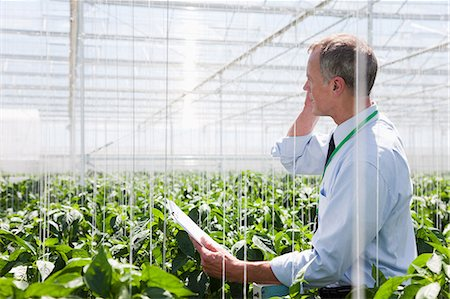 farm phone - Businessman talking on cell phone in greenhouse Stock Photo - Premium Royalty-Free, Code: 635-07456600