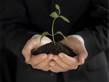 Man holding seedling and soil Stock Photo - Premium Royalty-Free, Code: 635-03373175