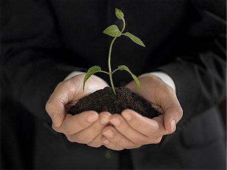 Man holding seedling and soil Stock Photo - Premium Royalty-Free, Code: 635-03373175