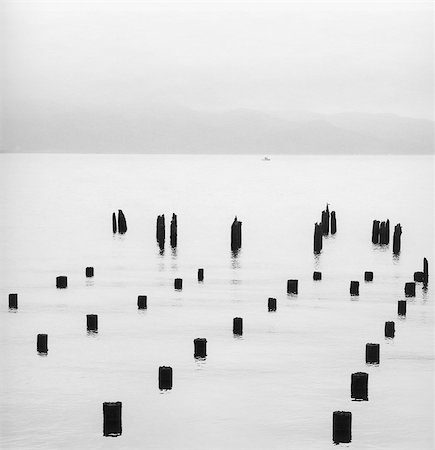 silhouette black and white - Silhouette of pilings in water Stock Photo - Premium Royalty-Free, Code: 635-03457729