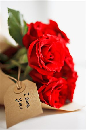 Close up of red roses with gift tag Stock Photo - Premium Royalty-Free, Code: 635-03577438