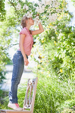 preteen girls stretching - Girl standing on chair and reaching to smell flowers growing on tree Stock Photo - Premium Royalty-Free, Code: 635-03641523
