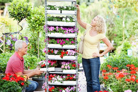 Couple buying flowers in nursery Stock Photo - Premium Royalty-Free, Code: 635-03685017