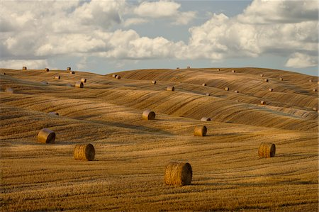 simsearch:845-03720933,k - Hay bales and rolling landscape, Tuscany, Italy Stock Photo - Premium Royalty-Free, Code: 635-03752798