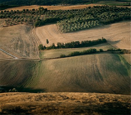 simsearch:845-03720933,k - Rolling landscape, Pienza, Tuscany, Italy Stock Photo - Premium Royalty-Free, Code: 635-03752793