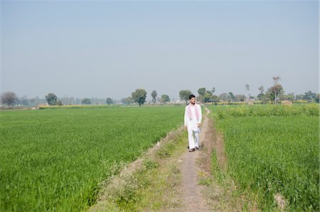 Farmer walking in the field, Sonipat, Haryana, India Stock Photo - Premium Royalty-Free, Code: 630-06724650