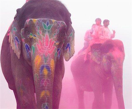 Three elephants at an elephant festival, Jaipur, Rajasthan, India Stock Photo - Premium Royalty-Free, Code: 630-01127427