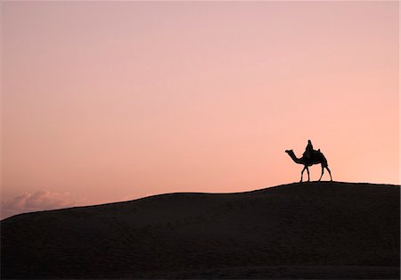 rajasthan camel - Silhouette of a person riding a camel, Jaisalmer, Rajasthan, India Stock Photo - Premium Royalty-Free, Code: 630-03479135