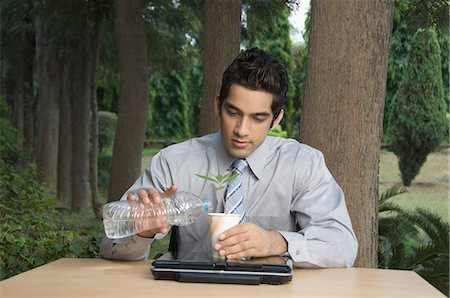 Businessman watering a plant Stock Photo - Premium Royalty-Free, Code: 630-03479866