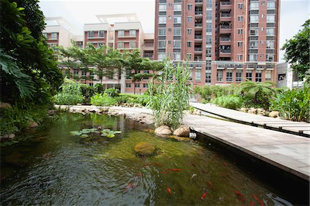 Fish pond in urban park Stock Photo - Premium Royalty-Free, Code: 632-06029778