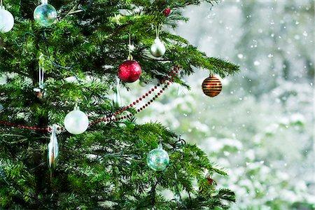 Christmas tree, close-up Stock Photo - Premium Royalty-Free, Code: 632-06118429