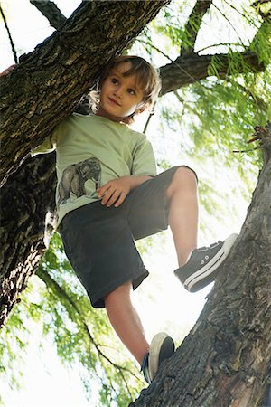 Boy standing in tree, low angle view Stock Photo - Premium Royalty-Free, Code: 632-06118761