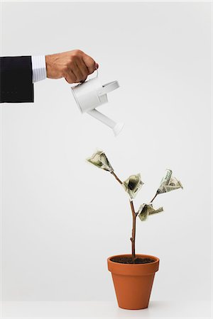 Businessman watering potted tree with hundred dollar bills growing on it Stock Photo - Premium Royalty-Free, Code: 632-06317145