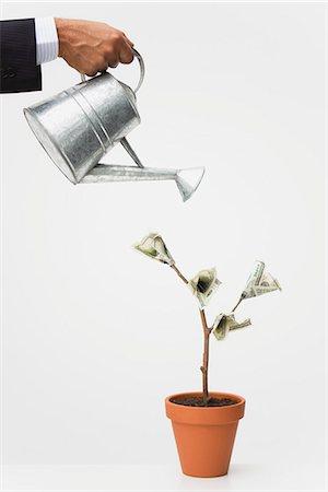 Businessman watering money tree, cropped Stock Photo - Premium Royalty-Free, Code: 632-06317171