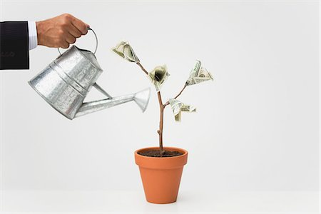 Businessman watering potted money tree, cropped Stock Photo - Premium Royalty-Free, Code: 632-06317284